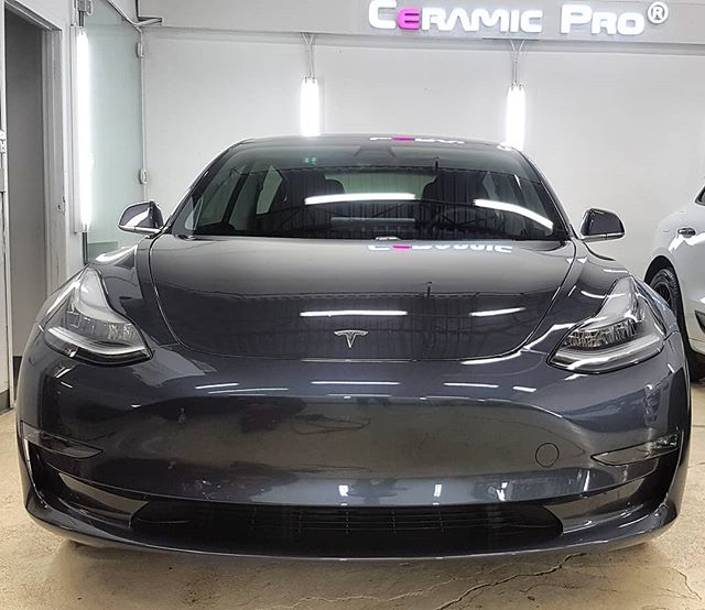 Tesla Paint Protection Options | 2018 Tesla Model 3 | Edmonton, AB