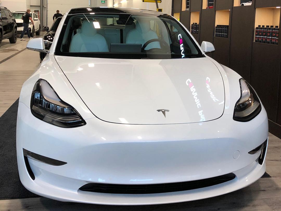 14.1 Tesla Model 3